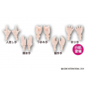 Pure Neemo Flection Full Flection Option Hands Manos C WHITE